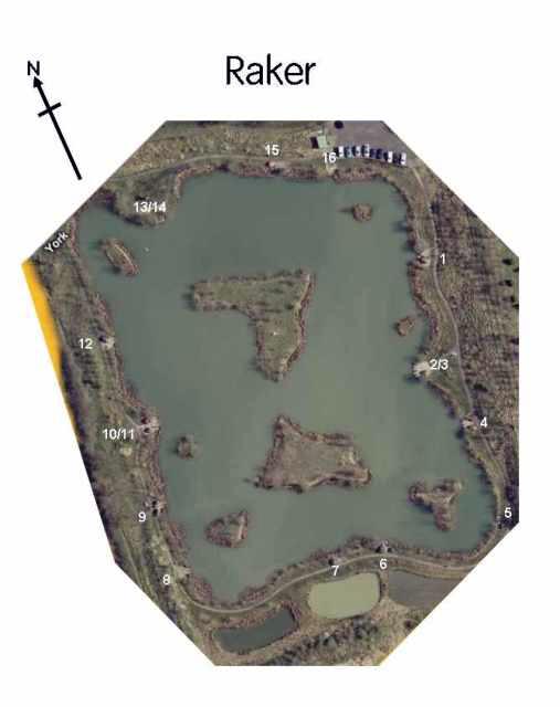 Kingfisher Lake pegs