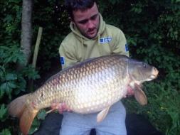 June 2017 catch